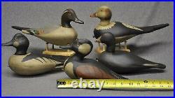 (5) FIVE East Coast style oldsquaw, merganser, pintail, goldeneye, coot duck decoys