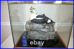 Alaskan King Eider Duck Decoy/Nature Display Wood Carving