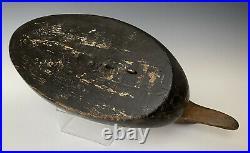 Antique Working Decoy Mason Black Duck, 17 Premier Grade Glass Eye Model c1910