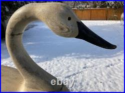 Beautiful Large Holly Style Hollow Carved Swan Decoy 36 Long x 20 High