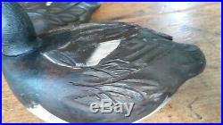 Beautiful Mint Pr Orel Leboeuf Broadbill Decoys Quebec Canada
