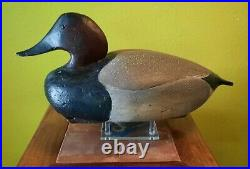 Canvasback Drake Ward Brother's Decoy