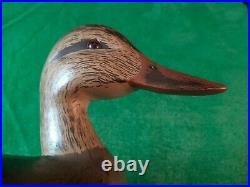 Carved Wooden Hunting Gadwall or Black Duck Decoy by Ken Harris New York