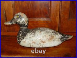 EVANS Vintage Duck Decoy Bluebill Original Working Bird with Glass Eyes