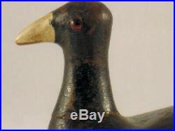 Louisiana Coot Duck Decoy Emile Hebert Antique Root Head Wooden Goose Shorebird