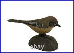 Miniature Kinglet Songbird Jess Blackstone