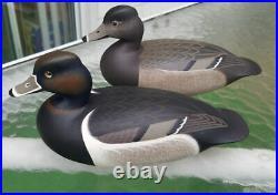 Miniature Ringneck Duck Decoys Tuckerton School Rick Brown Brick Township Nj