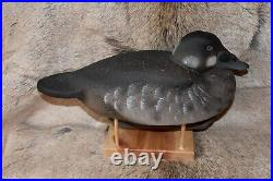 Outstanding Pair Scoter Duck Decoys By World Class Carver Author Tom Matus Ln