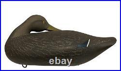 Preening Black Duck Decoy Charlie Bryan