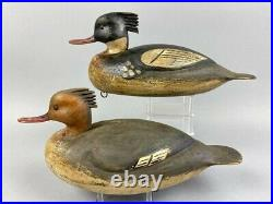 Signed Mark Daisey Merganser Duck decoys