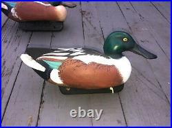 Spoonbill/Shoveler duck decoys