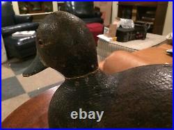 Super Vintage Old Redhead Hen Duck Decoy Original Paint Solid Body And Rasping