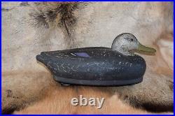 Superb Antique Vintage Black Duck Pair Cork Wood Duck Decoys East Coast Ex