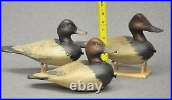 TRIO (3) of East Coast style DIVER DUCK decoys canvasback, red head, blue bill
