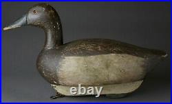 Vintage Canvasback Hen Duck Decoy By Unknown Carver