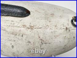 Vintage Paul Gibson Sleeping Canvasback Duck Decoy Havre de Grace, MD Circa 1950