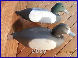 Vintage Solid Wood Scaup Working Duck Decoy Pair Classic Set of Bluebills NICE